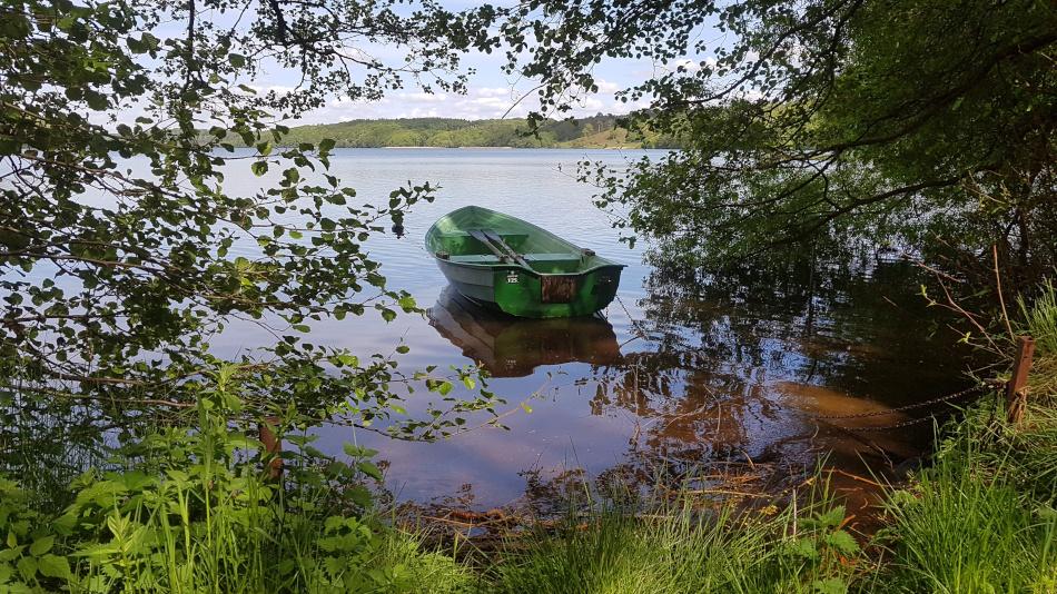 Båden i Hald Sø